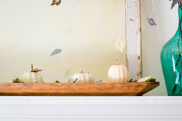 French Loaf Dough Bowl with Pumpkins