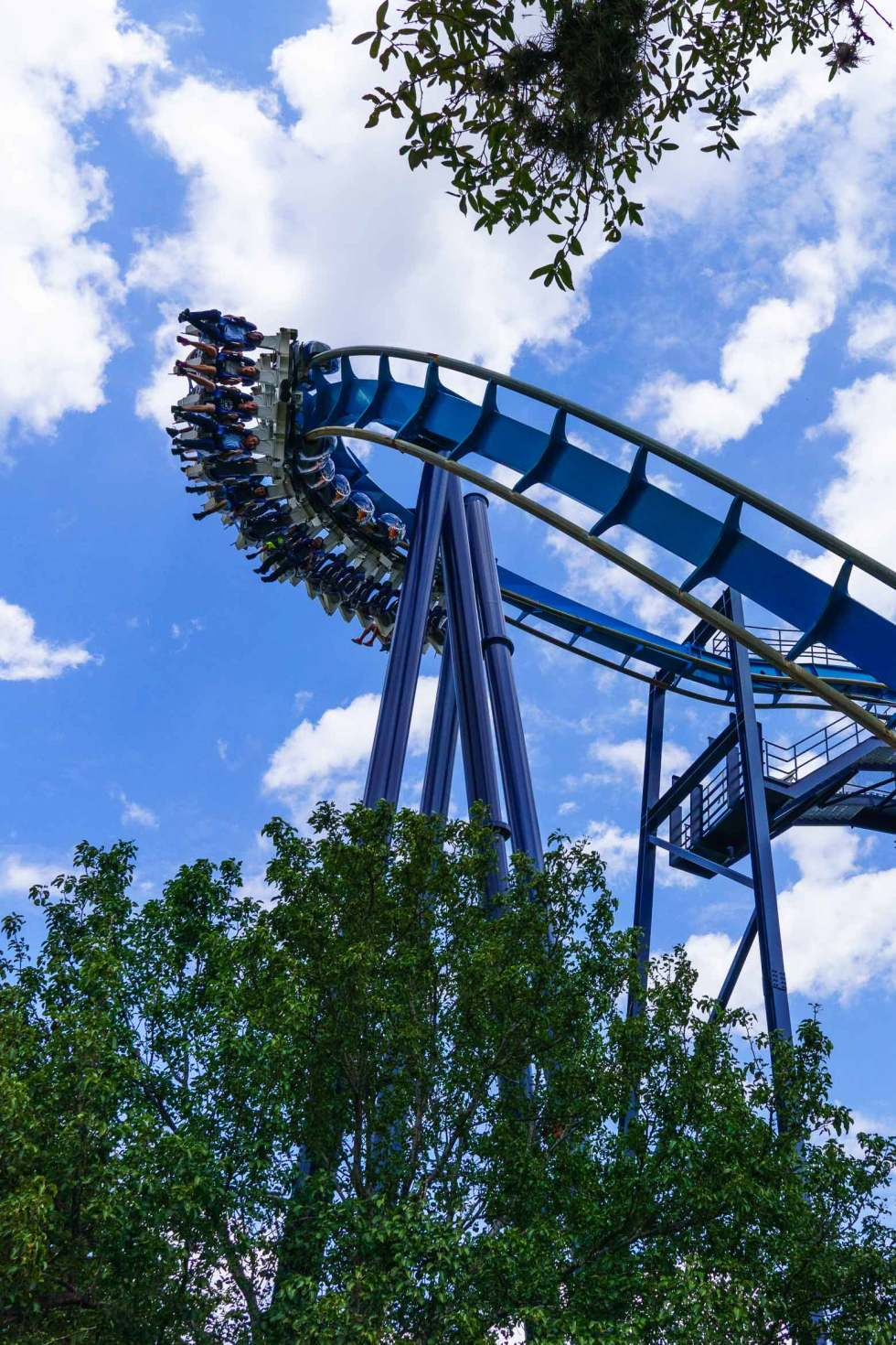 Have you been to SeaWorld San Antonio recently? Come see what the major changes are from then to now!