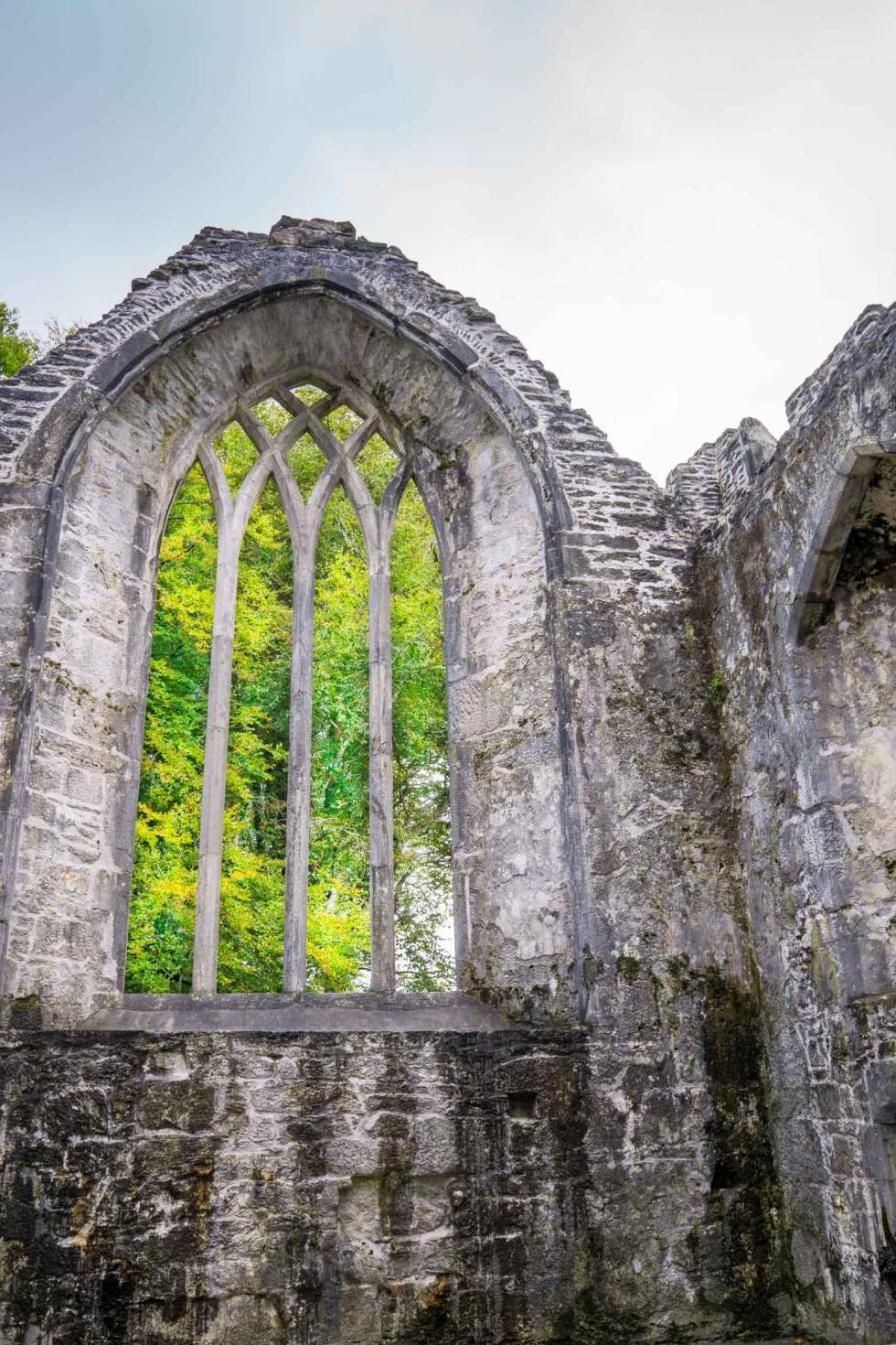 Muckross Abbey ruins are worth viewing. Don't miss the Yew tree inside!
