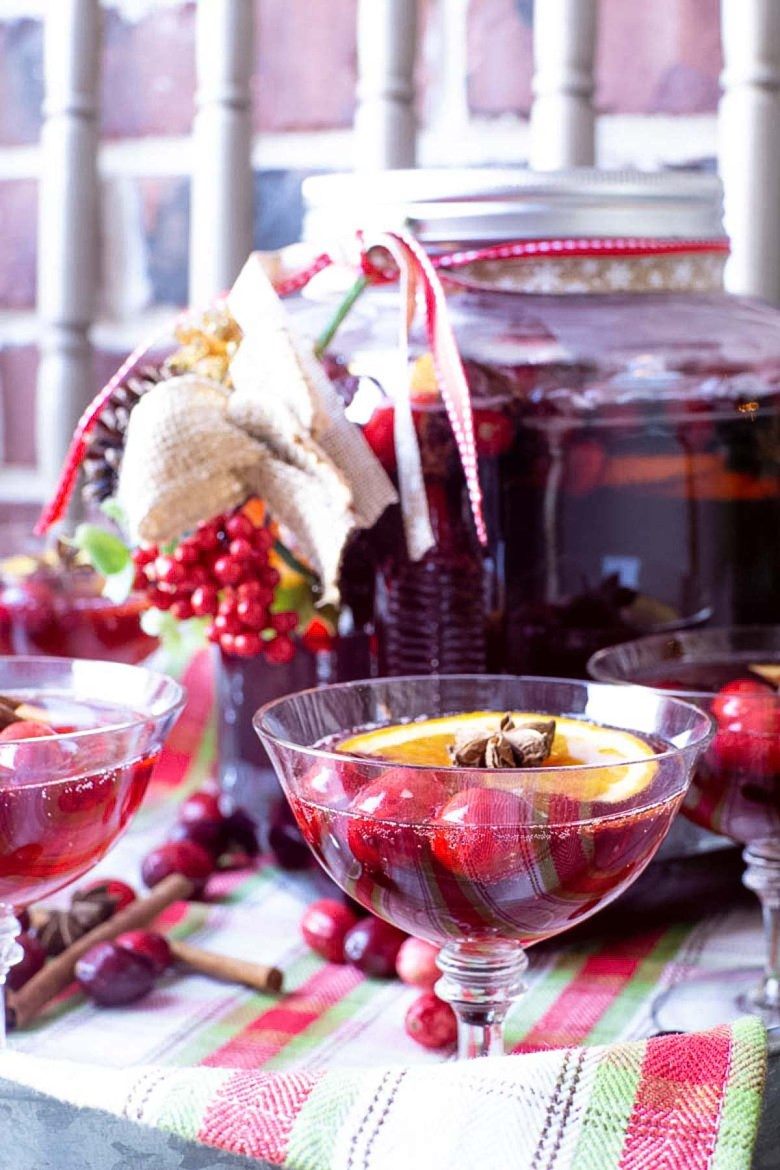 cranberry gingerale punch recipe in a cocktail glass for an elegant presentation at a holiday party
