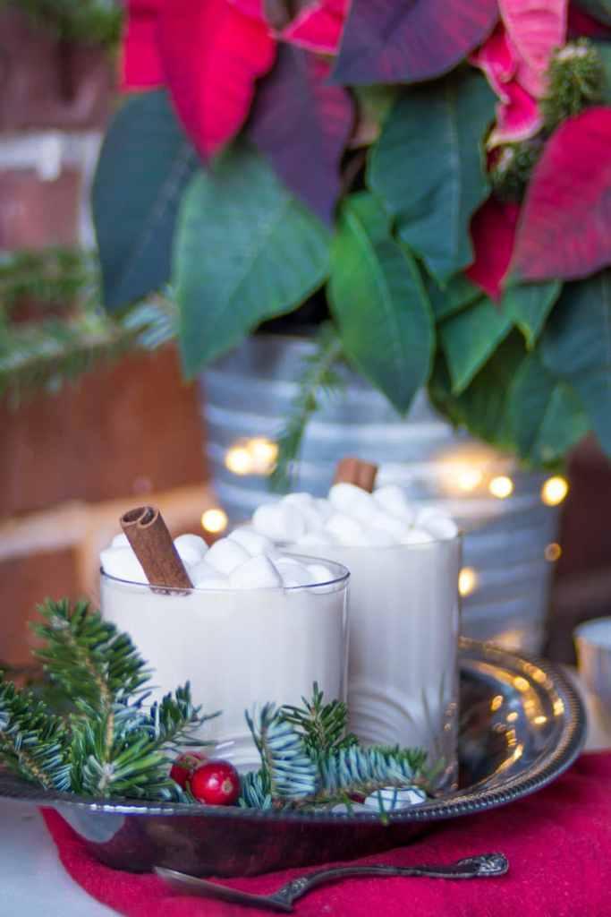 Christmas hot chocolate drinks