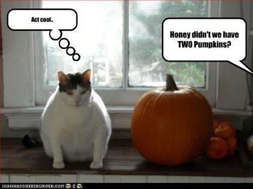 Image result for Halloween memes