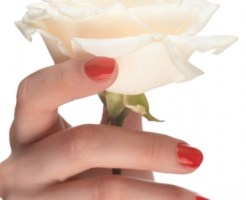バラを持つ女性の指