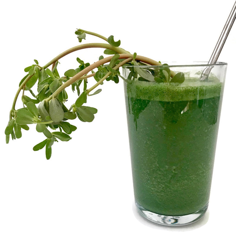Purslane Super Green Smoothie • Make Ad Lib