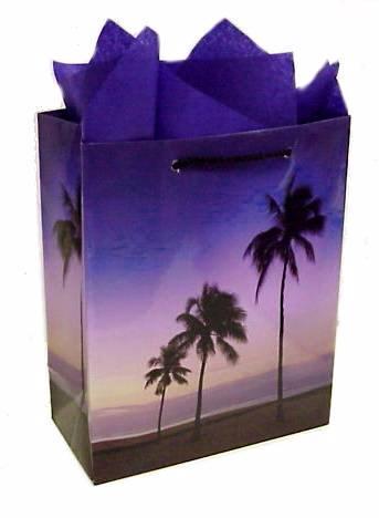 Beach Themed Palm Tree Gourmet Goodie Bag