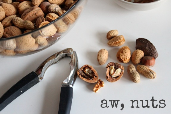 Holiday ABC Series N is for Nuts  Make and Takes