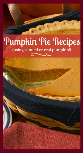 pumpkin pie recipes using both canned or real pumpkin