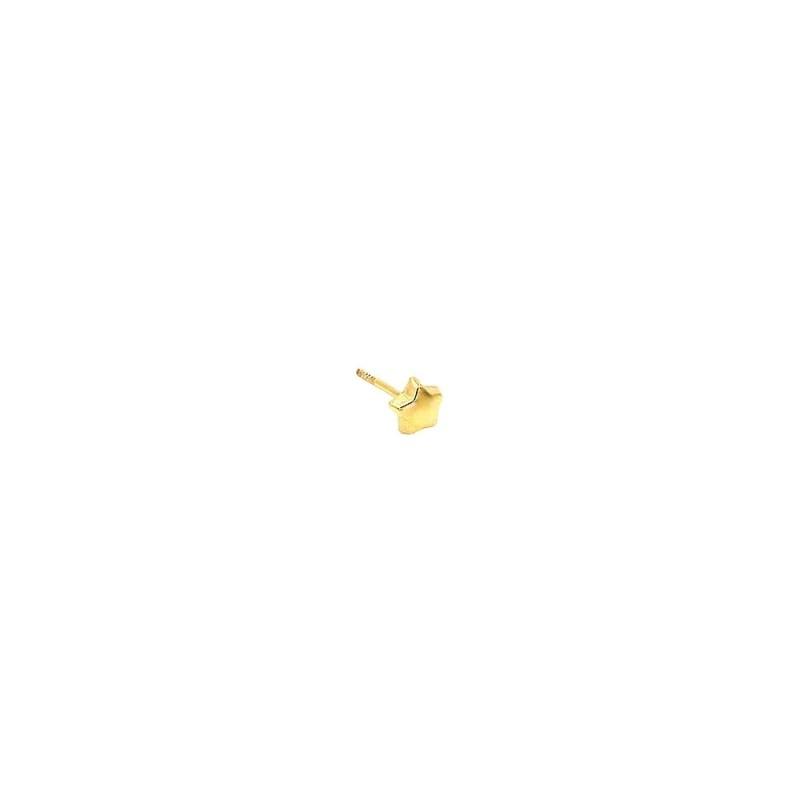 Pendiente de estrella con cierre rosca para la oreja