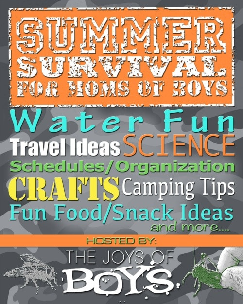 Summer Survival Series for Moms of Boys