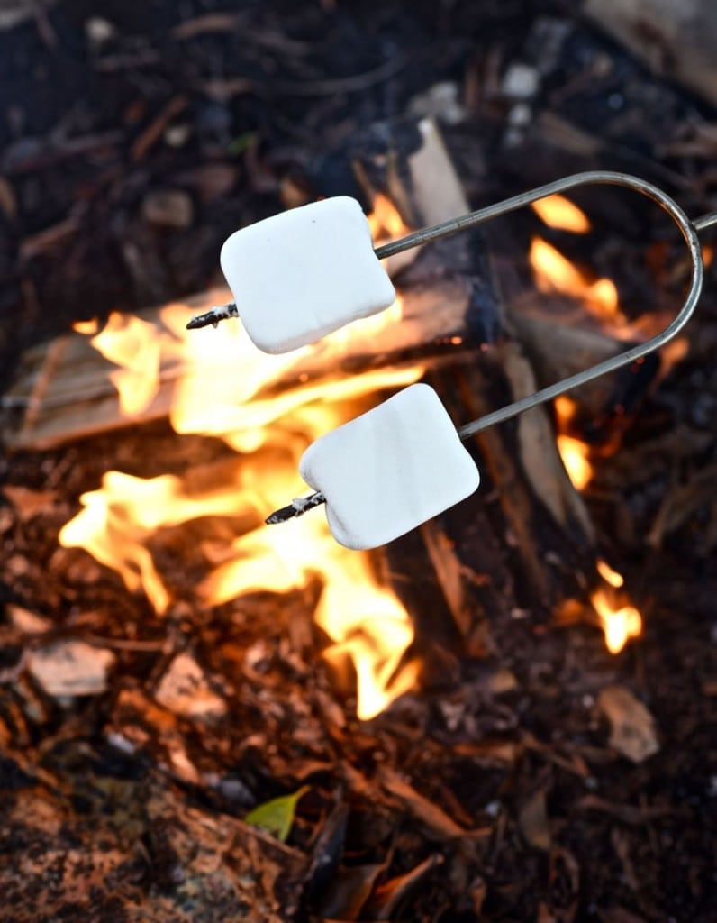 S'mores with Duraflame Campfire Roasting Logs