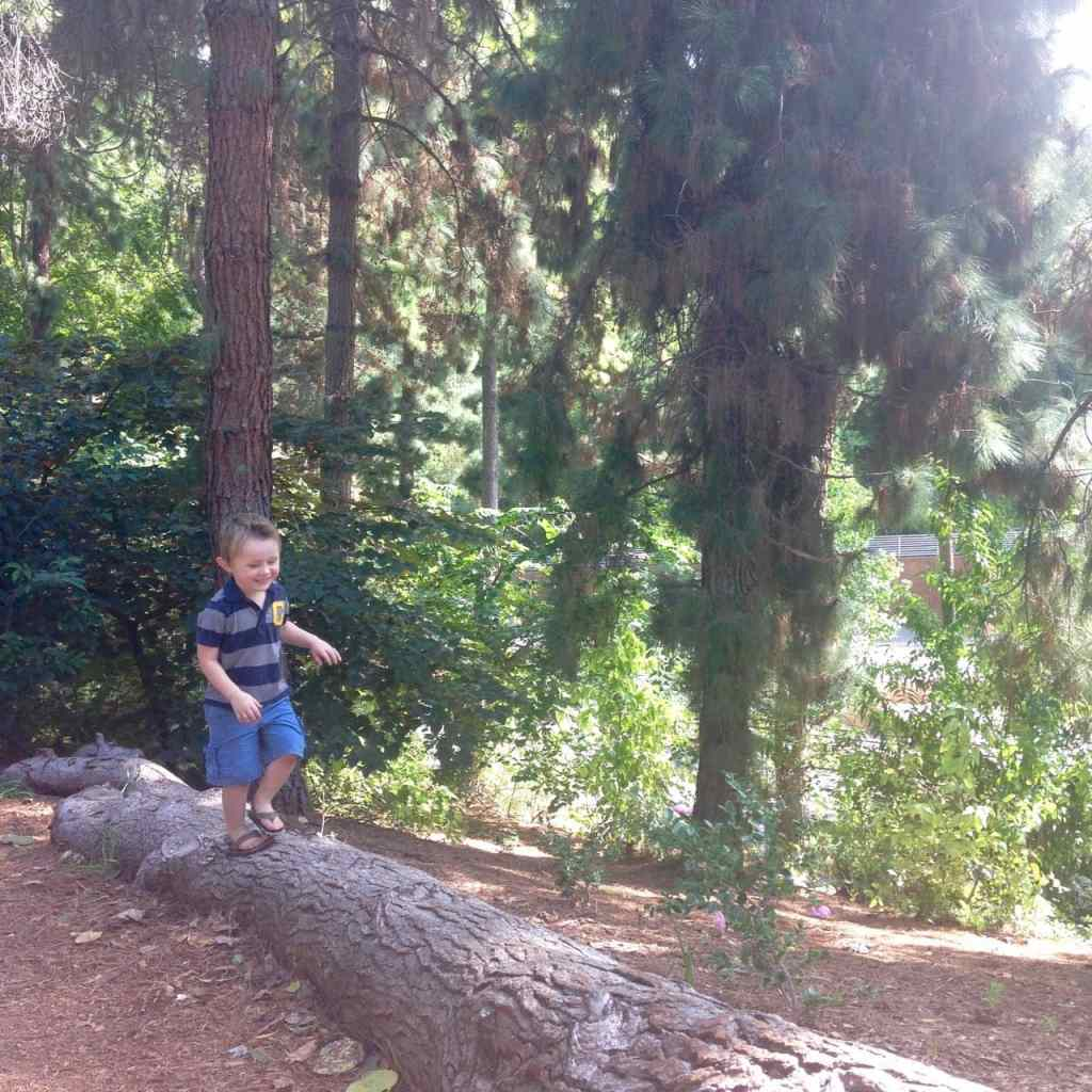 Exploring at the San Diego Zoo