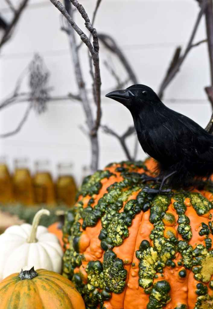 Raven decoration at a haunted forest Halloween party