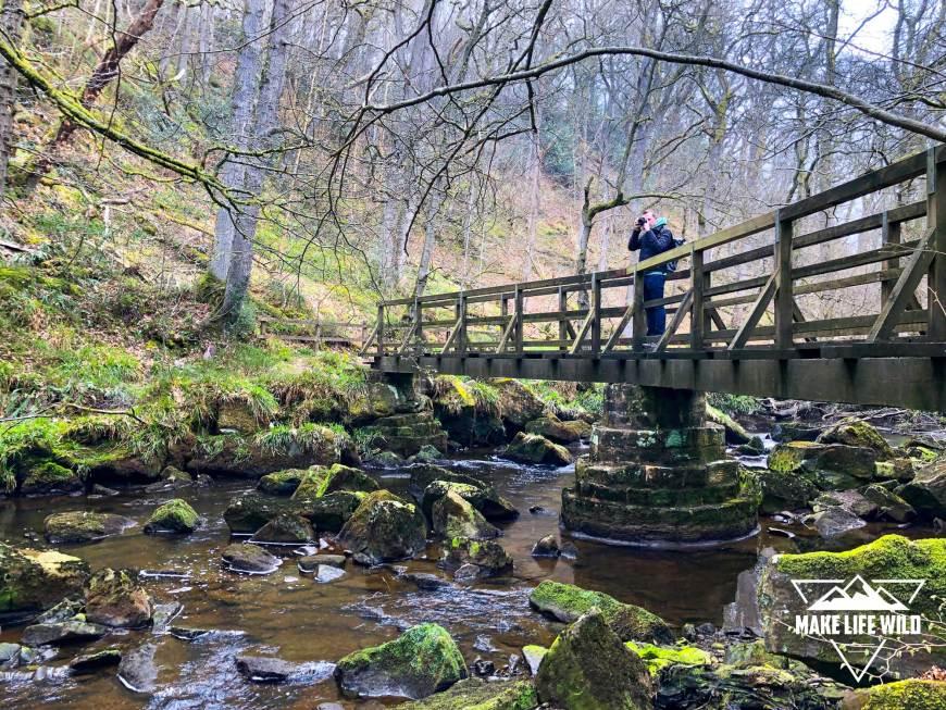 Bridge on the walk near Mallyan Spout and Thomason Foss
