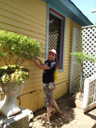 Day 1: Lisa enjoying her scraping!