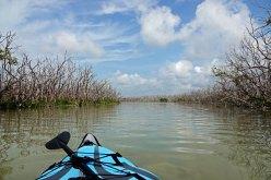 Kayaking around a small island.