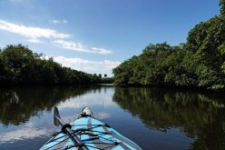 E. G. Simmons Park had a kayak trail so we took Pirogue Bleue out for a bit.