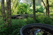 The Amphibian Foundation's Amphibian Research & Conservation Center. These round containers are experimentally controlled mini habitats called mesocosms. Endangered amphibians breed and produce young in these mesocosms.