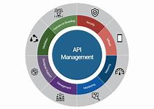 API Management Firm For Business Consideration