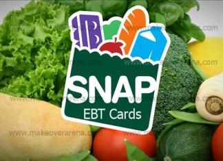 Snap EBT Cards