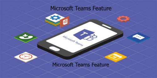 Microsoft Teams Feature