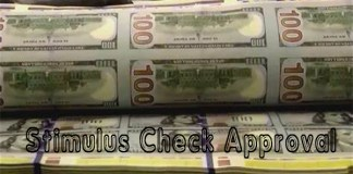 Stimulus Check Approval