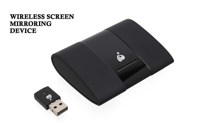 Wireless Screen Mirroring Device