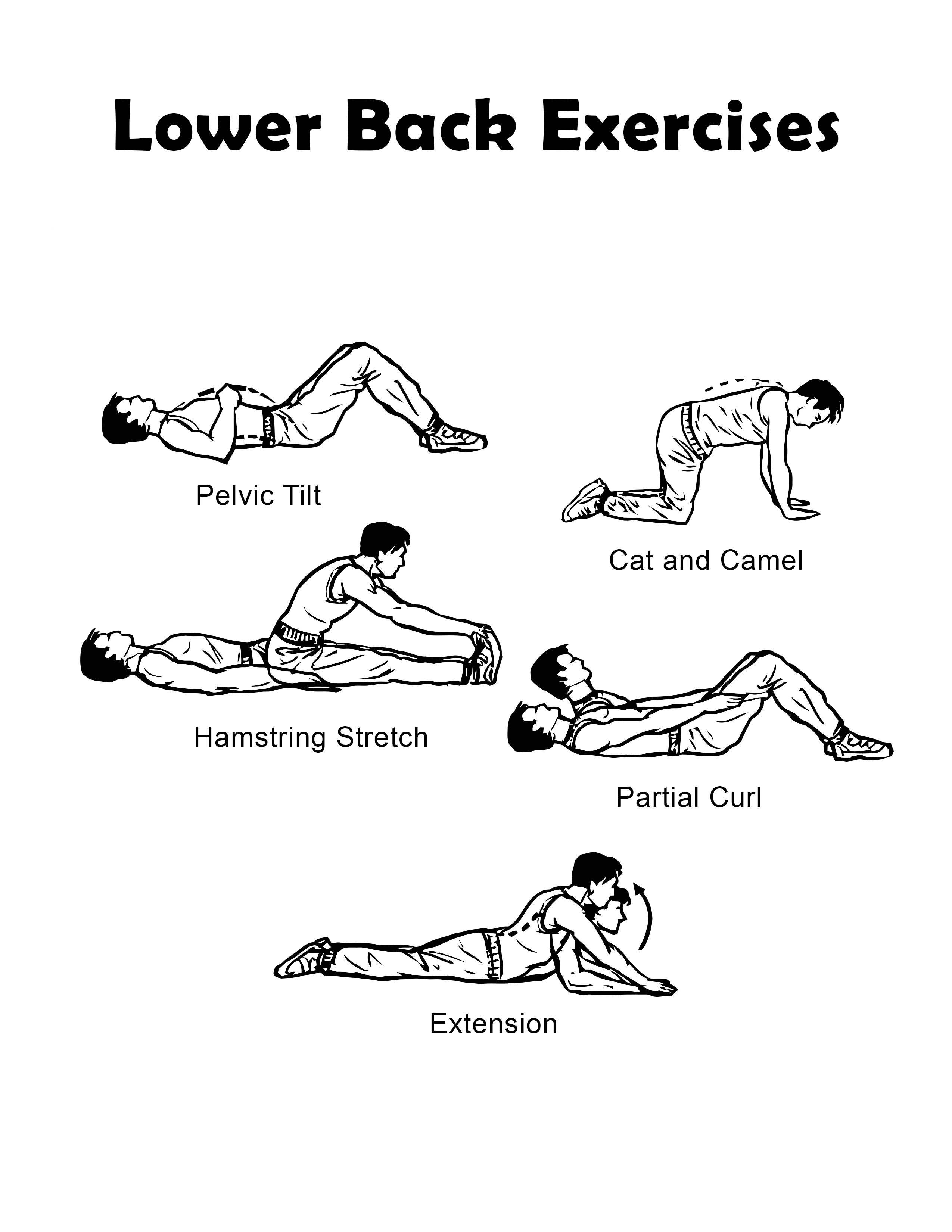 Lower Back Exercise Chart