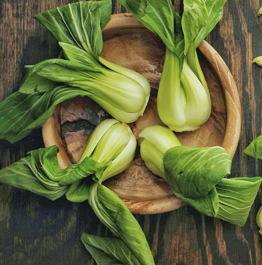 Growing and harvesting Pak choi
