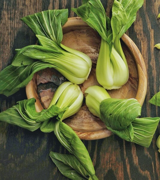 Growing and harvesting Pak choi