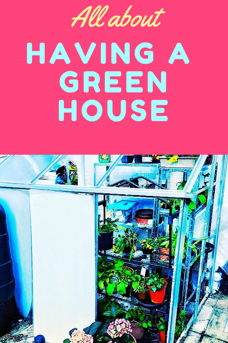 having a greenhouse at home