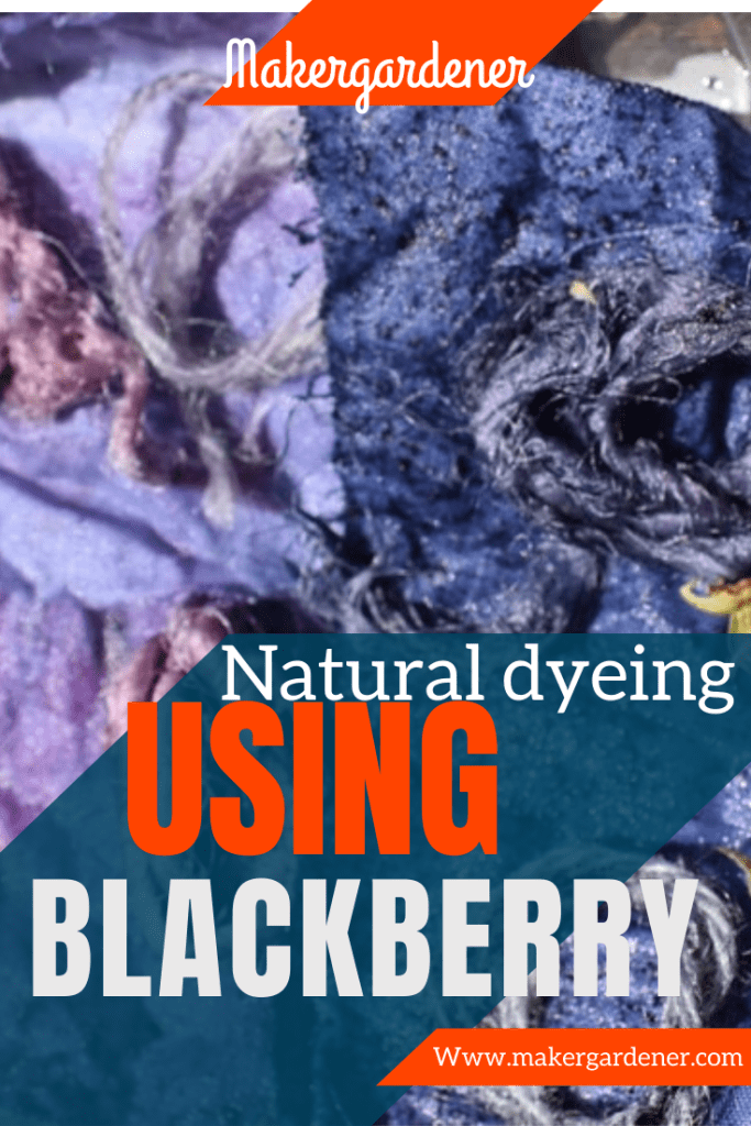 blackberry dyeing