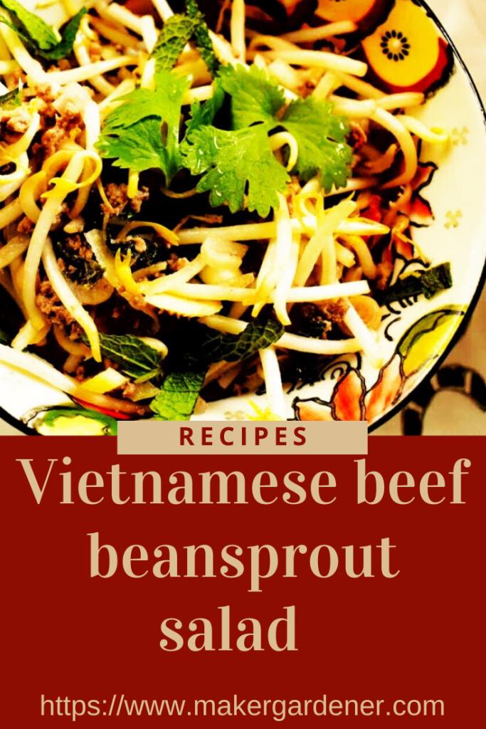 Vietnamese bean sprout salad