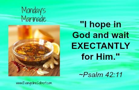 Monday's Marinade- EXPECT - Ps 42-11