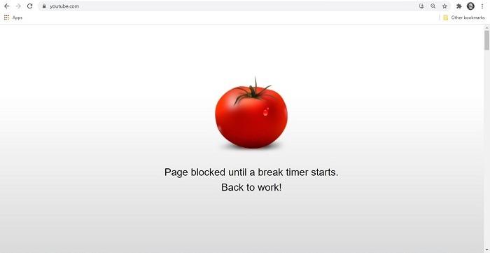 Beste Chrome-Erweiterungen für Studenten Webseite mit striktem Workflow blockiert