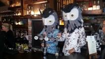 Agi & Sam owls