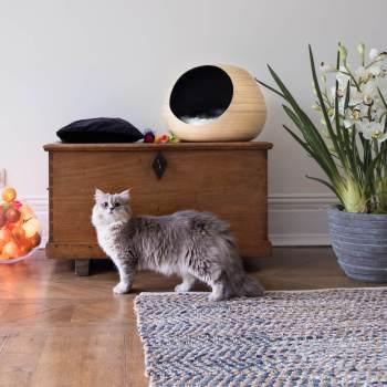 Black bamboo cat ball 5