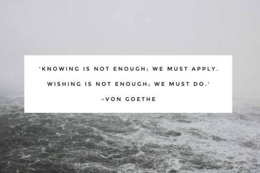 """""""Knowing is not enough; we must apply. Wishing is not enough; we must do."""""""