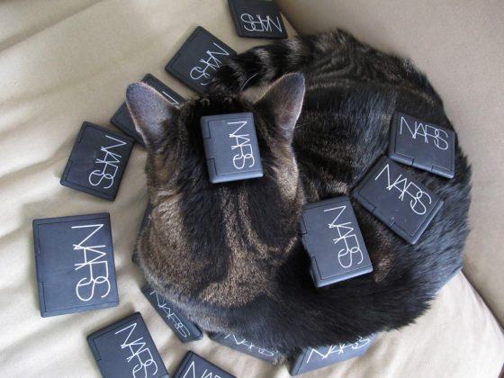 tabs-cat-kitty-model-2010-3