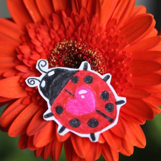 tabs-cat-ladybug-2