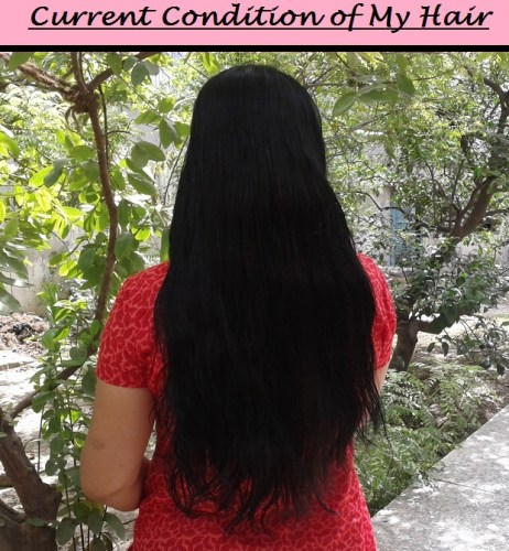 My Hair Fall Control Story - Hair Routine and Products I Used