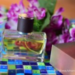 all good scents arise edt for men preview