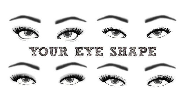 Eye Shapes For Makeup Finding Your Eye Shape Themakeupchair