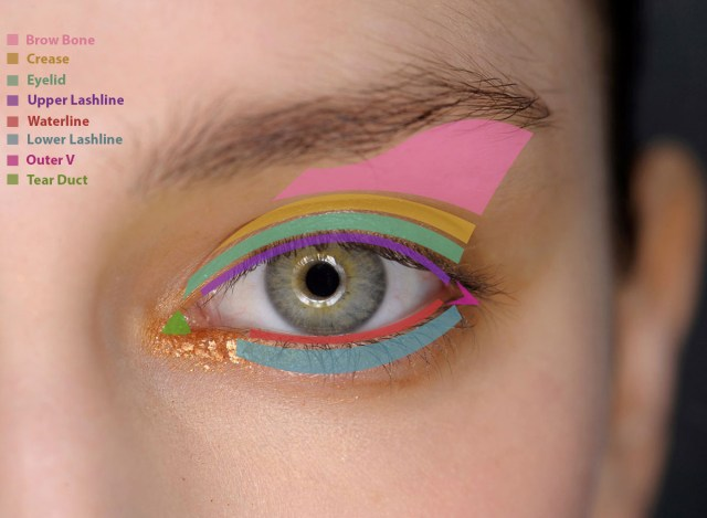 How To Apply Eye Makeup With Pictures How To Apply Eye Makeup What Products To Put Where Fashionisers