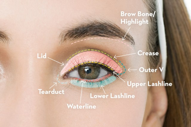Shaded Eye Makeup How To Apply Eyeshadow Best Eye Makeup Tutorial