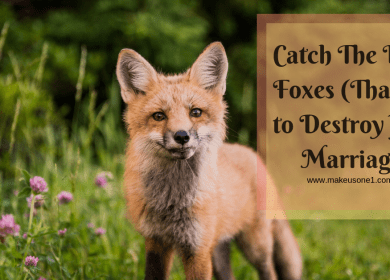 Catch the Little Foxes That Want to Destroy Your Marriage