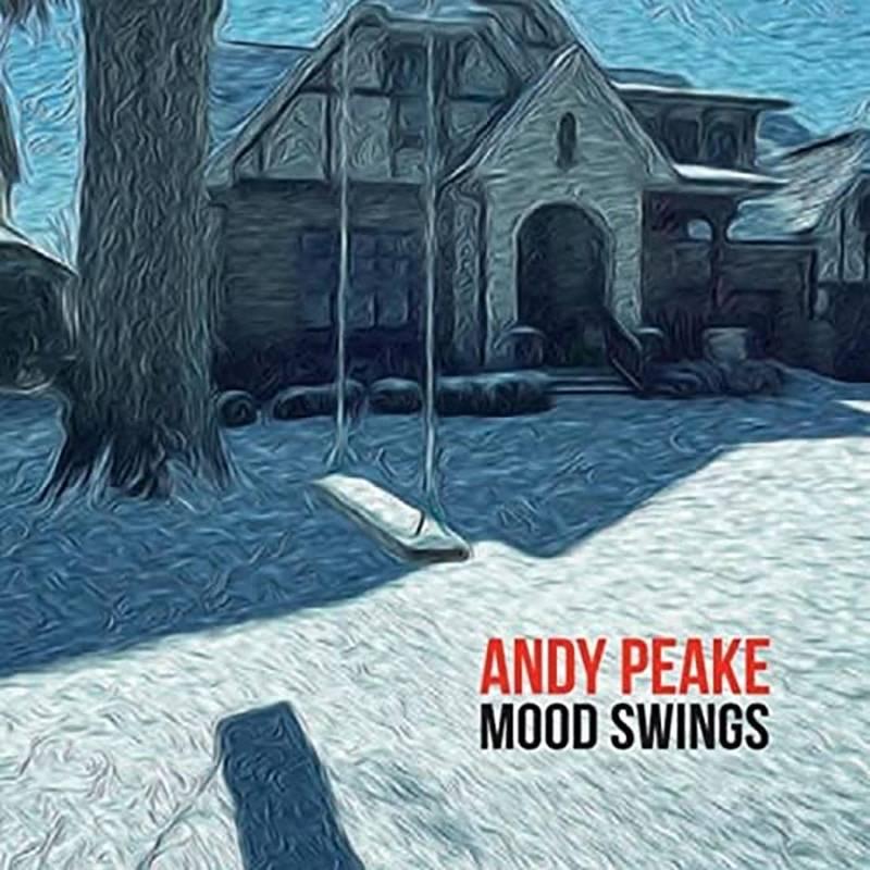 Andy Peake  Mood Swings