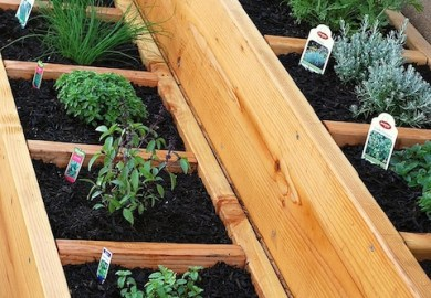 Ideas About Small Vegetable Gardens On Pinterest