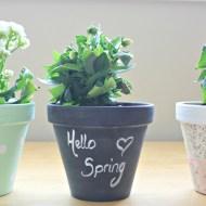 Pretty Little Flower Pots