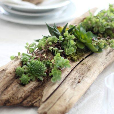 12 Creative DIY Succulent Planter Ideas