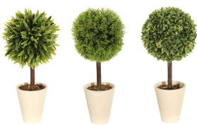 Canadian Tire Topiary Set
